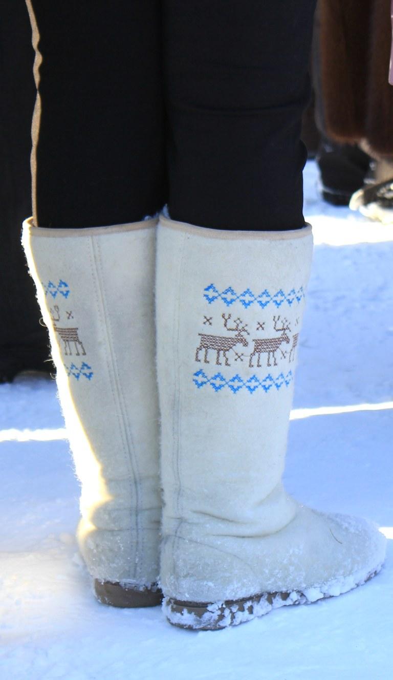 reindeer-everywhere