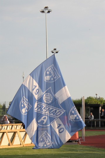 A Fremad flag