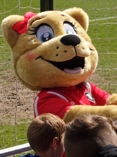 The lion mascot is more cuddly than the beast on the new Salford City flag.